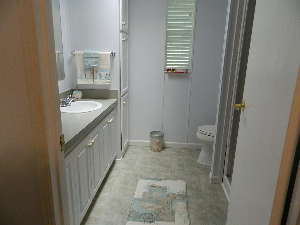 Winter Home Master Bathroom