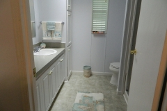 Winter Home Master Bathroom